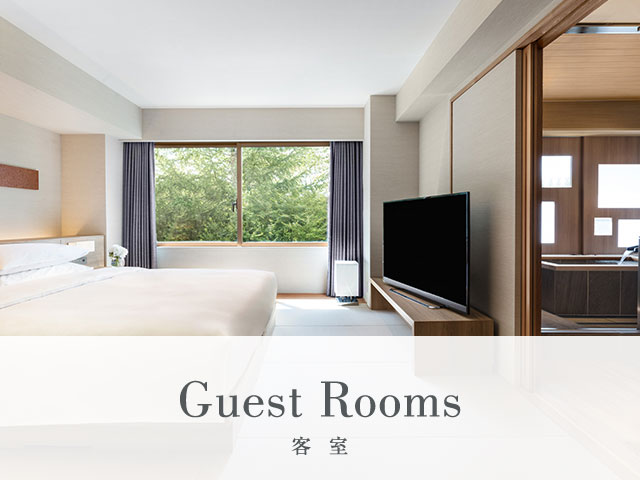 Guest Rooms 客室